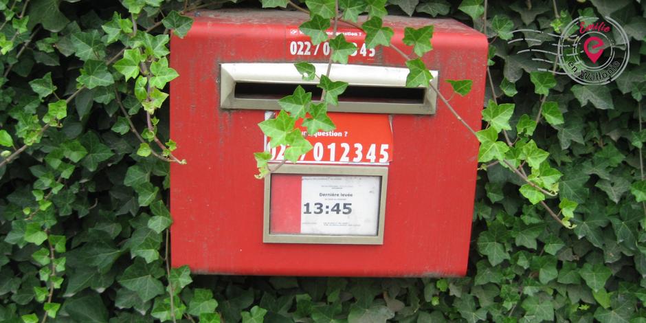Emilie en Wallonie | Collectionne | Les Taches rouges