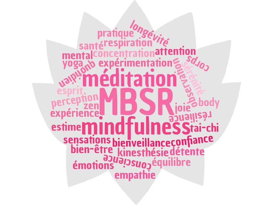 mindfulness ou pleine conscience en une image