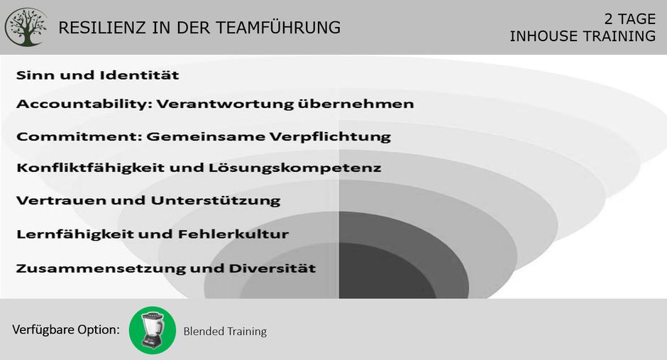 Resilienz Teamführung Training