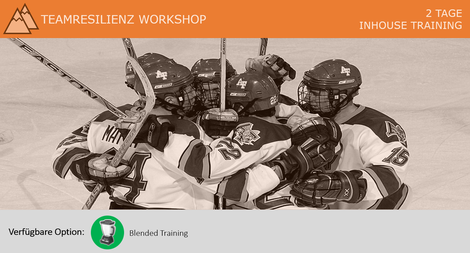 Teamresilienz Workshop
