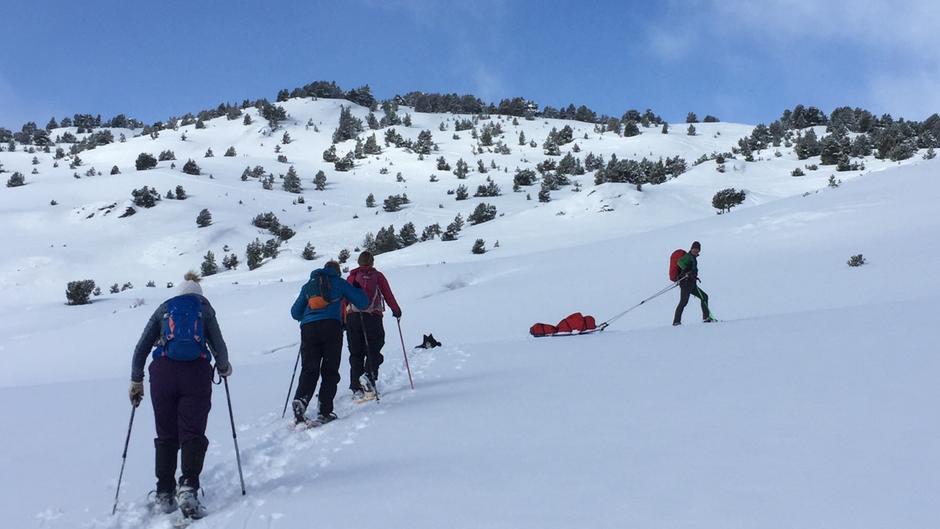 Randonnée raquettes dans les Pyrénées
