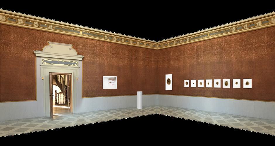 Entwurf Hängung in der Galerie Schloss Ratibor: Stille, Nest 1, Kokons (8 aus 12)