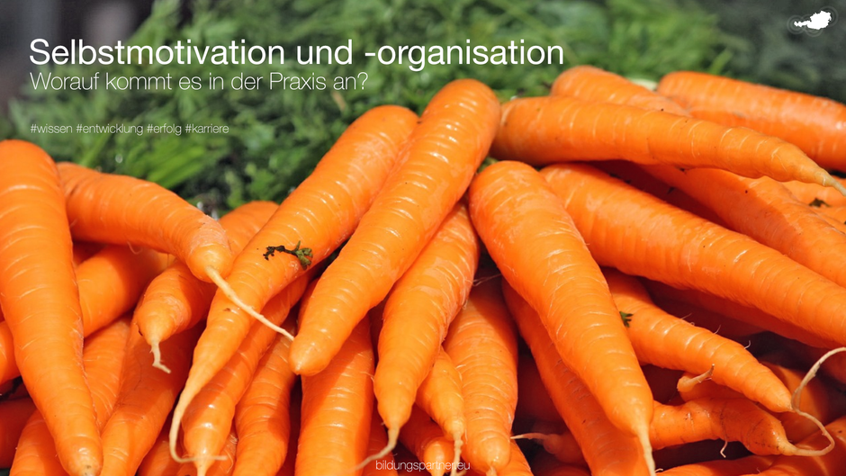 Selbstmotivation, Selbstorganisation