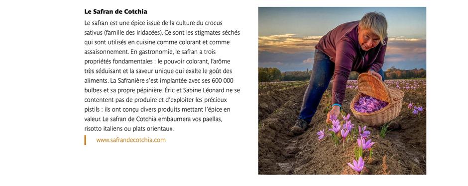 Visite touristique du safran en Belgique à Wasseiges