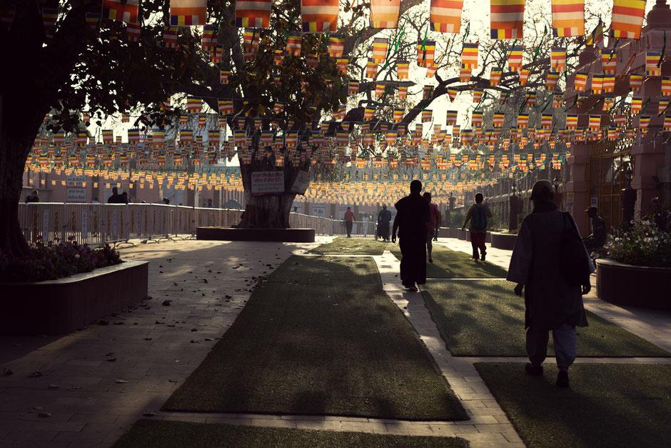 auf dem Weg zum Bodhi Tree bei Sonnenaufgang