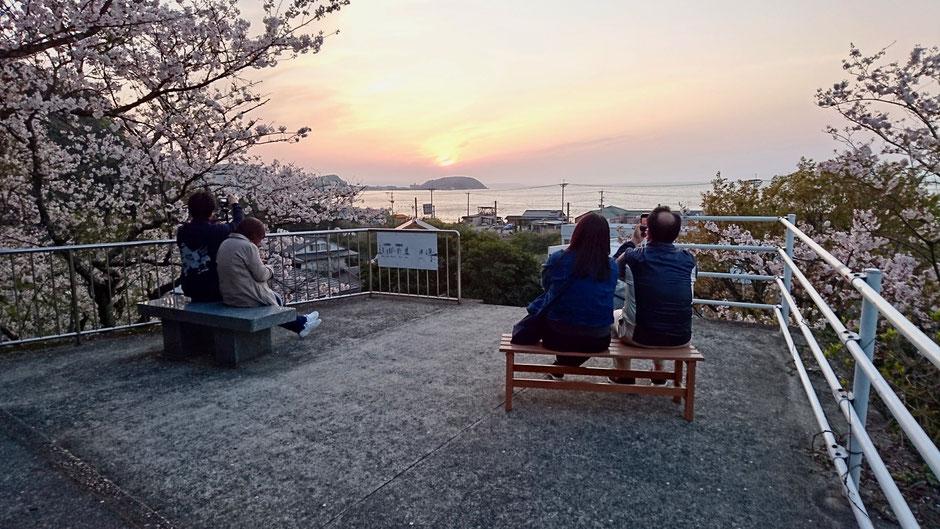 桜・海・夕日の眺め