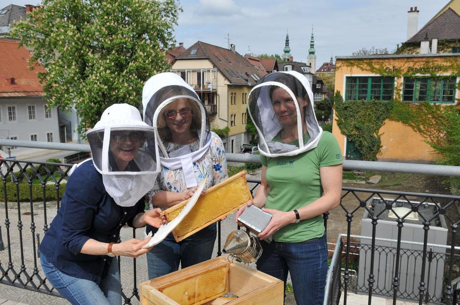Bienenhaltung und Honigernten in der Stadt Klagenfurt ist möglich. www.stadtbienen-klagenfurt.at
