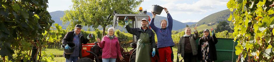 Weingut Hubert Müller Maikammer: Schnaps, Likör, Edelbrände und Spitzenweine aus der Pfalz