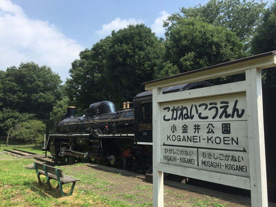 SL C57 train display at Koganei Park Tokyo Koganei tourist spot TAMA Tourism Promotion - Visit Tama SL機関車 C57展示 小金井公園 東京都小金井市 観光スポット 多摩観光振興会