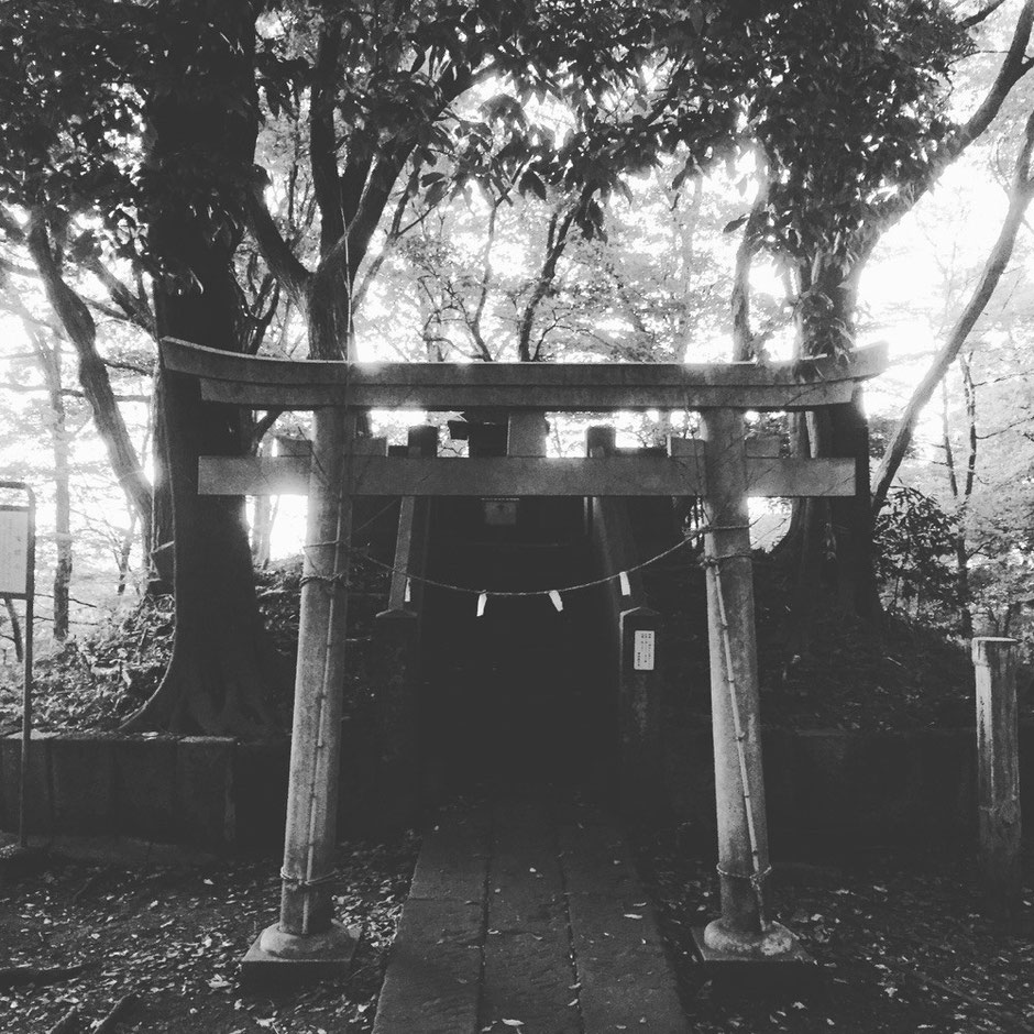 Sengen Shrine at the top of Mt. Sengen Tokyo Fuchu mountain nature walking healing tourist spot TAMA Tourism Promotion - Visit Tama 浅間神社 浅間山頂上 東京都府中市 自然 散策 癒し リフレッシュ 観光スポット 多摩観光振興会