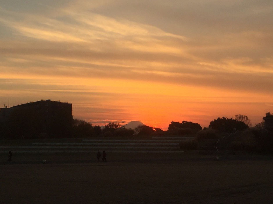 Mt. Fuji view during Sunset time at Showakinen Park Tokyo Tachikawa niceview winter diamond Fuji tourist spot TAMA Tourism Promotion - Visit Tama 夕暮れと富士山 昭和記念公園 東京都立川市 富士見 サンセットビュースポット 多摩観光振興会