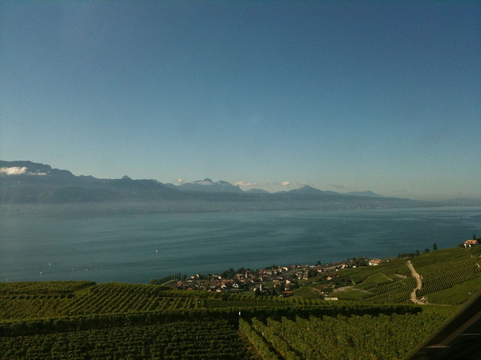 Lac Léman Genfersee Lago di Ginevra Lake Geneva tourist spot Suisse Schweiz Svizzera Switzerland ルマン湖 ジュネーブ湖 スイス 観光