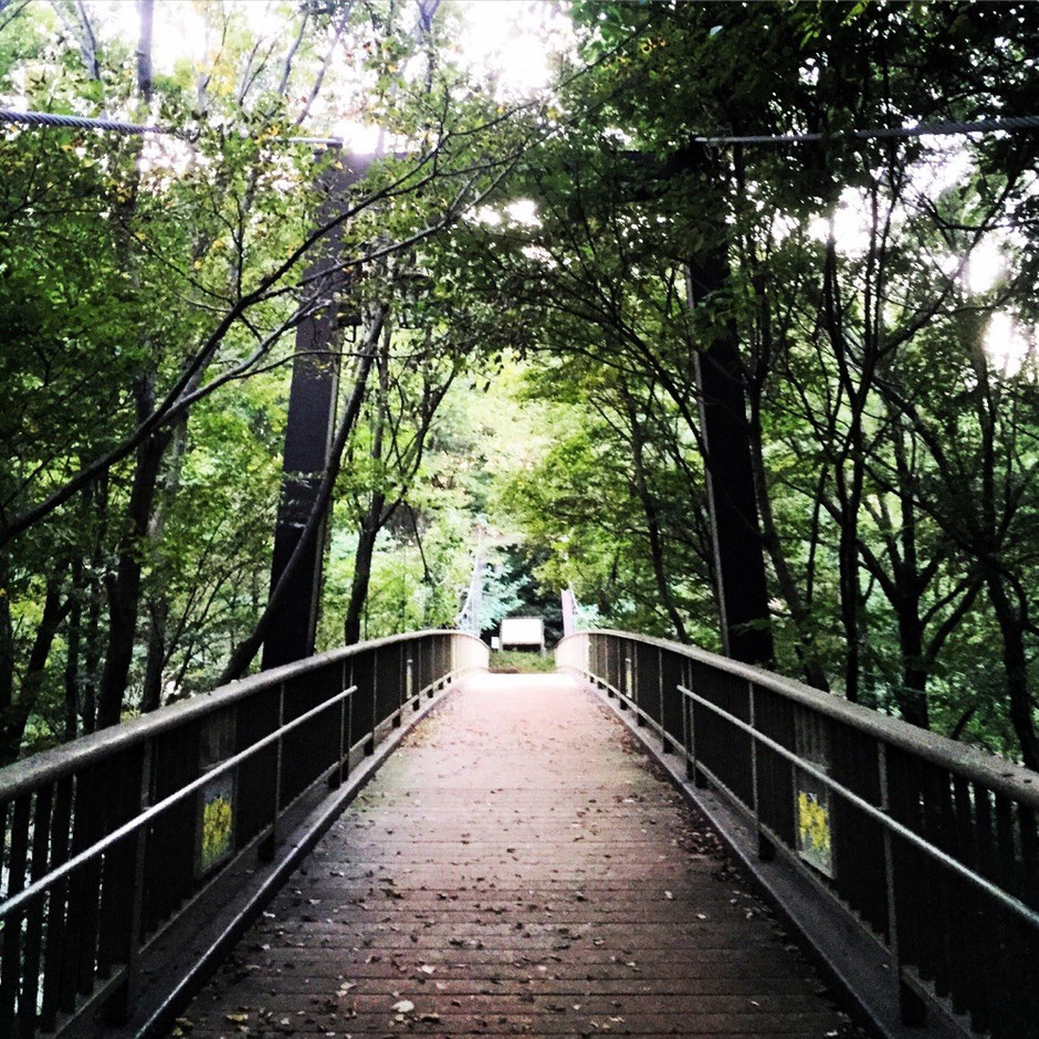 Kisuge-bashi Bridge Tokyo Fuchu Sengenyama mountain Tama cemetary nature walking tourist spot TAMA Tourism Promotion - Visit Tama きすげばし 東京都府中市 浅間山公園 多磨霊園 自然 散策 観光スポット 多摩観光振興会