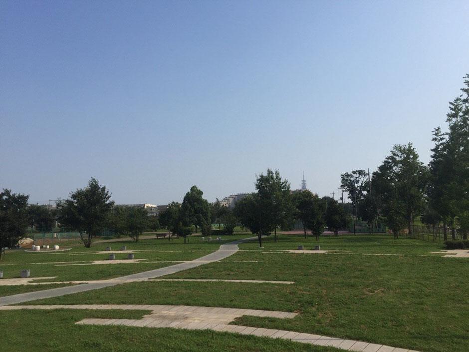 Rokusen Park Tokyo Higashikurume walking picnic tourist spot TAMA Tourism Promotion - Visit Tama  都立六仙公園 東京都東久留米市 散策 ピクニック 観光スポット 多摩観光振興会