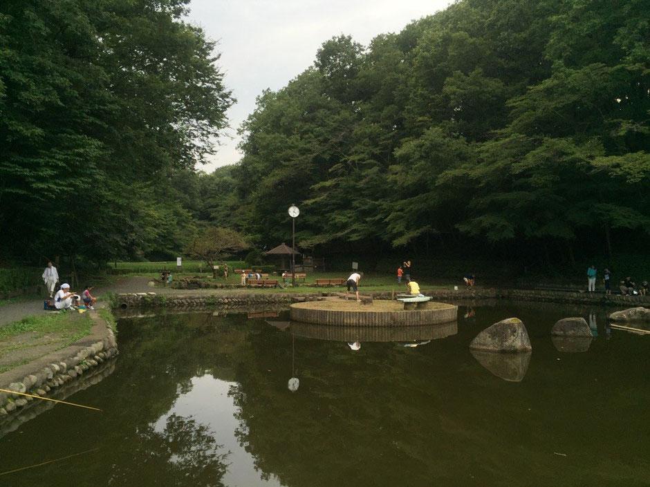Fishing pond at Noyamakita Park Tokyo Musashimurayama walking picnic tourist spot TAMA Tourism Promotion - Visit Tama 市立野山北公園 釣り堀 東京都武蔵村山市 散策 ピクニック 観光スポット 多摩観光振興会
