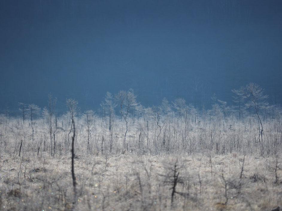 白馬岳から立山連峰
