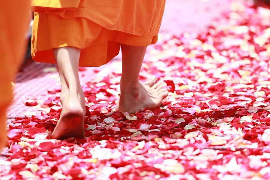 mbsr protocollo riduzione stress thich nhat hanh pace passo sole rosso cuore fiore petali vento sentiero fine gioioso colorati petalo piedi monaco