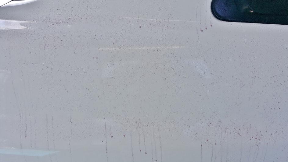 鉄粉でボディがザラザラ BNR34GT‐R 埼玉の車磨き専門店 三芳