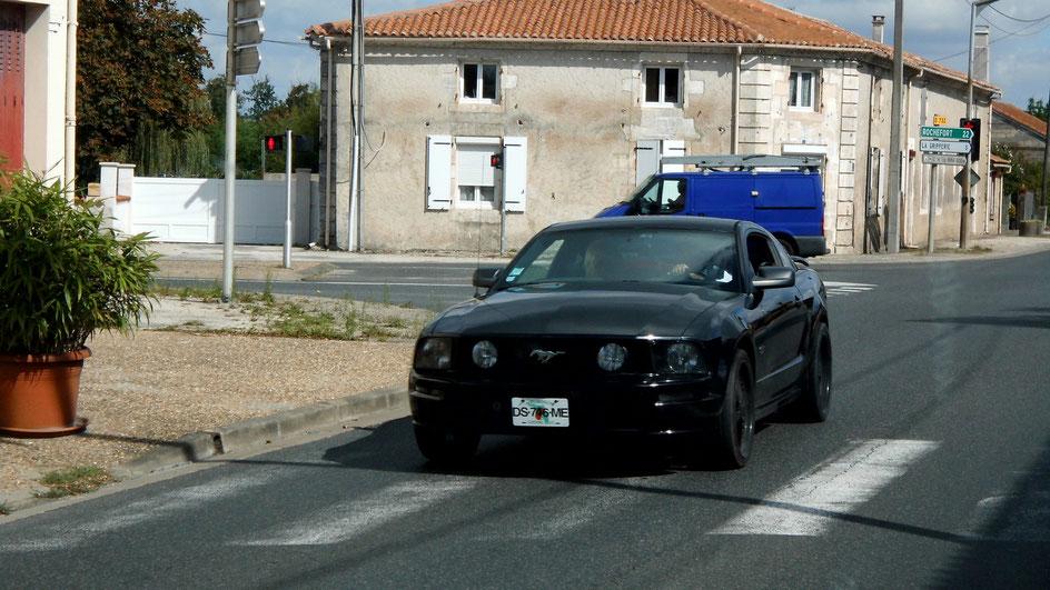 Bild: Schwarzer Mustang in Frankreich