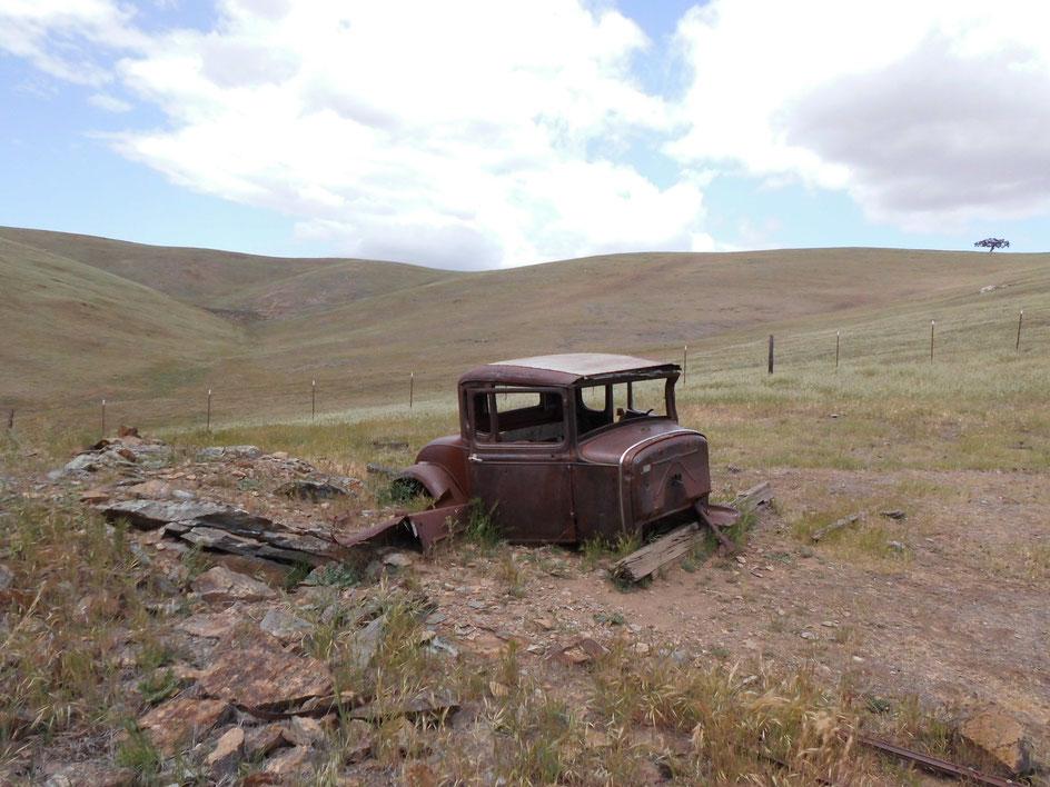 Bild: Roadkill  in California Hills. Oldtimer, Vintage Car