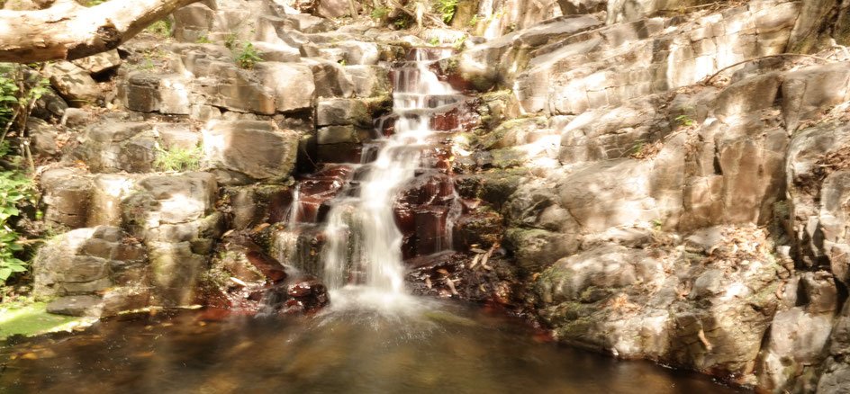 Wasser energetisiert liebe energie positiv achtsamkeit wasser-struktur gefäß ying-yang