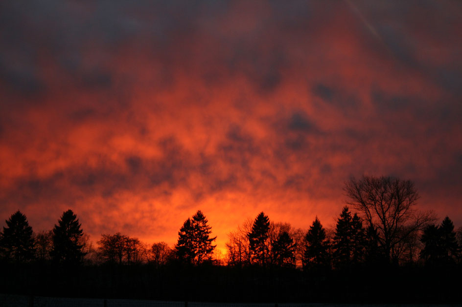Sonnenuntergang in der Nähe des Belauer Sees, Foto: Ulf F. Baumann