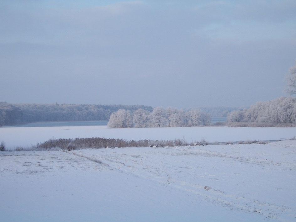 Der Belauer See im Winter.