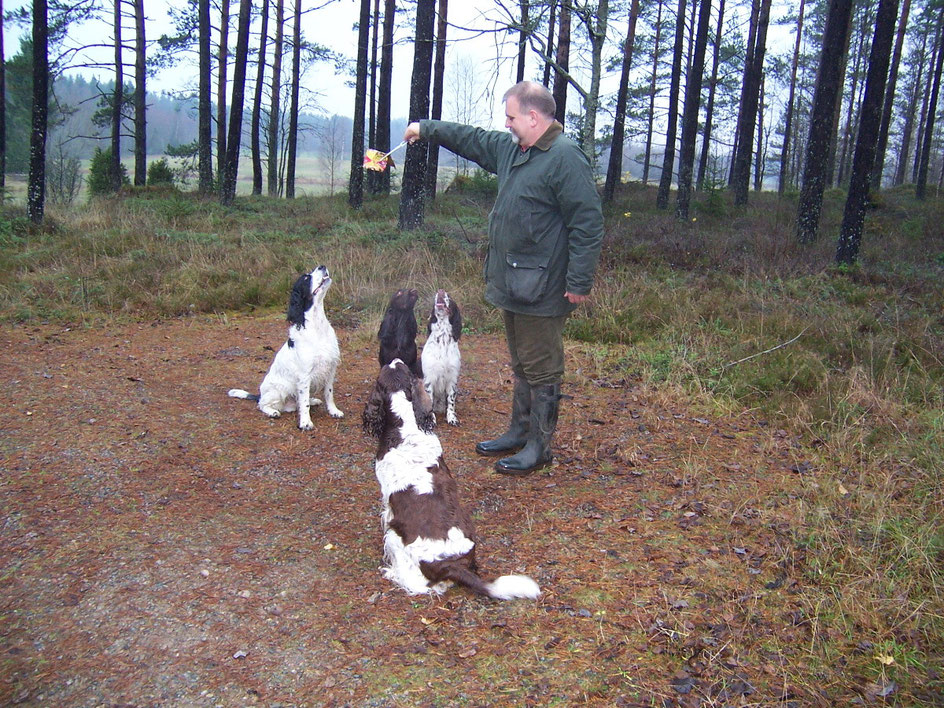 The dogs were really excited that I took notice of the treasure they had found, Photo: Ulf F. Baumann