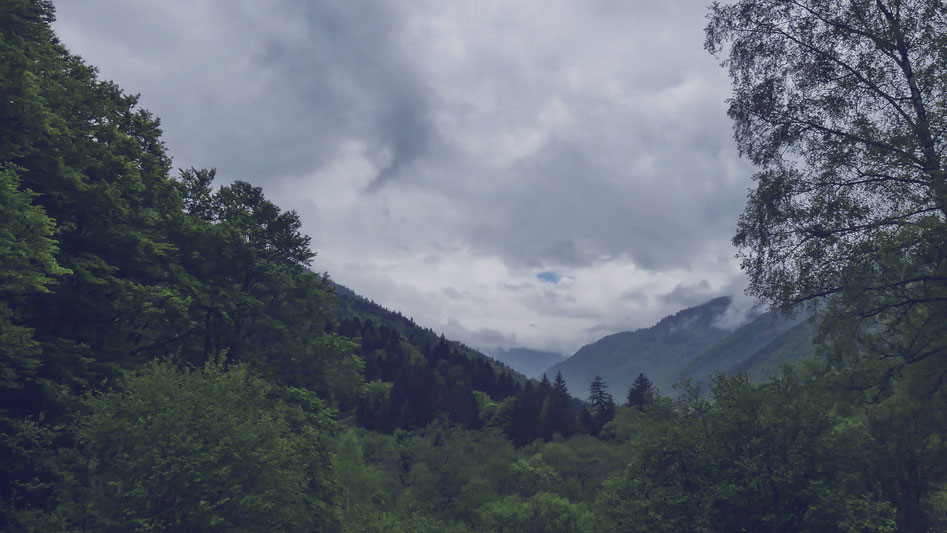 montagne bulgarie rila bigousteppes forêts