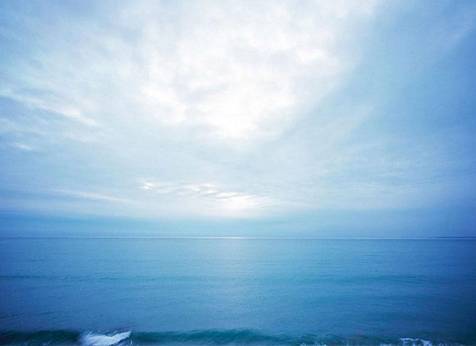 Bild: Seele - Meeresfoto SEO (Suchmaschinenoptimierung)