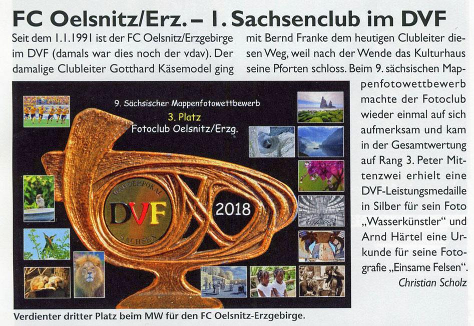 DVF-Journal 2018-7/8