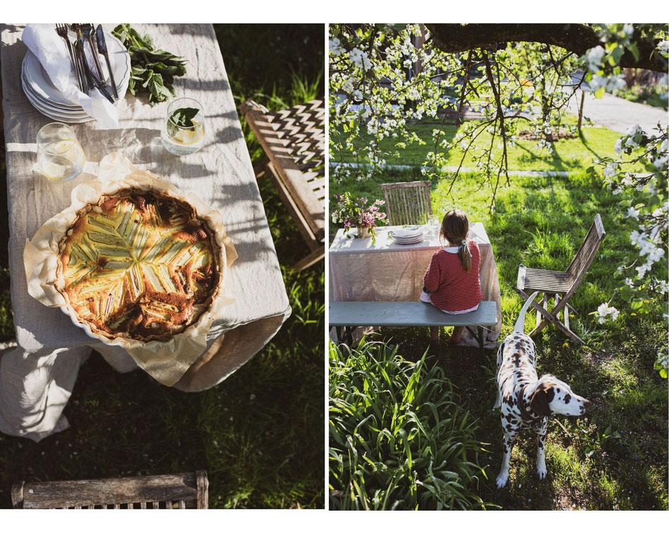 Unser Lieblingskuchen mit frischem Rhabarber aus dem Bauerngarten