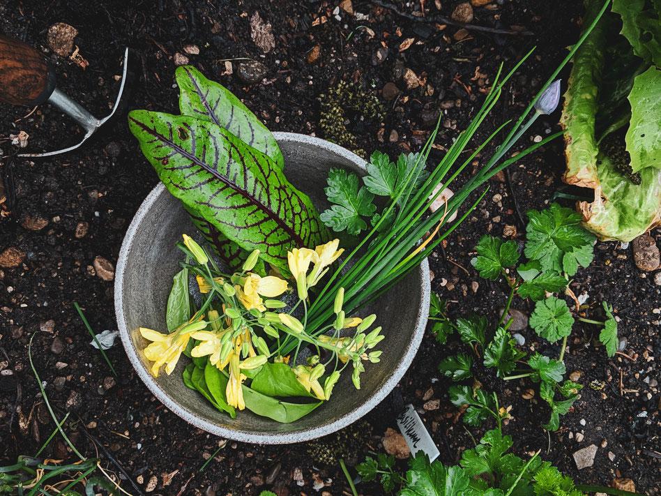 Auch im Frühling gibts schon einiges zum Ernten
