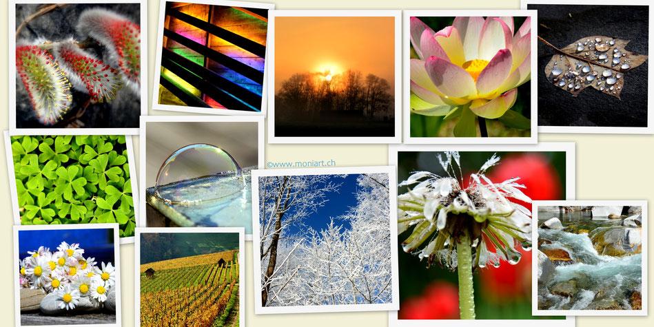 Karten Quadrat Fotografie Natur Kunst Design Postcrossing