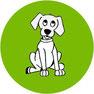 Canine Distemper Virus bei Hunden