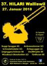 Fasnacht Walliswil, Mehrzweckhalle, DJ Aspen, Speedy, Party, Dosco, Fest, Bar
