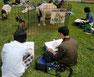 動物を懸命に描く参加生徒たち