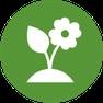 BIO BADEMANTEL DAMEN Baumwolle, ökologisch unbedenklich