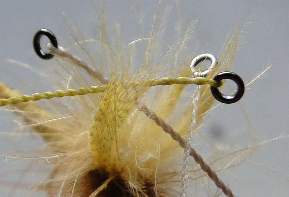 fly fishing, furled leader, dry fly