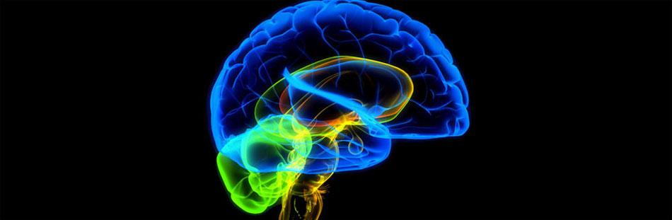 cabinet médical de neurologie dely ibrahim alger - Site de ...