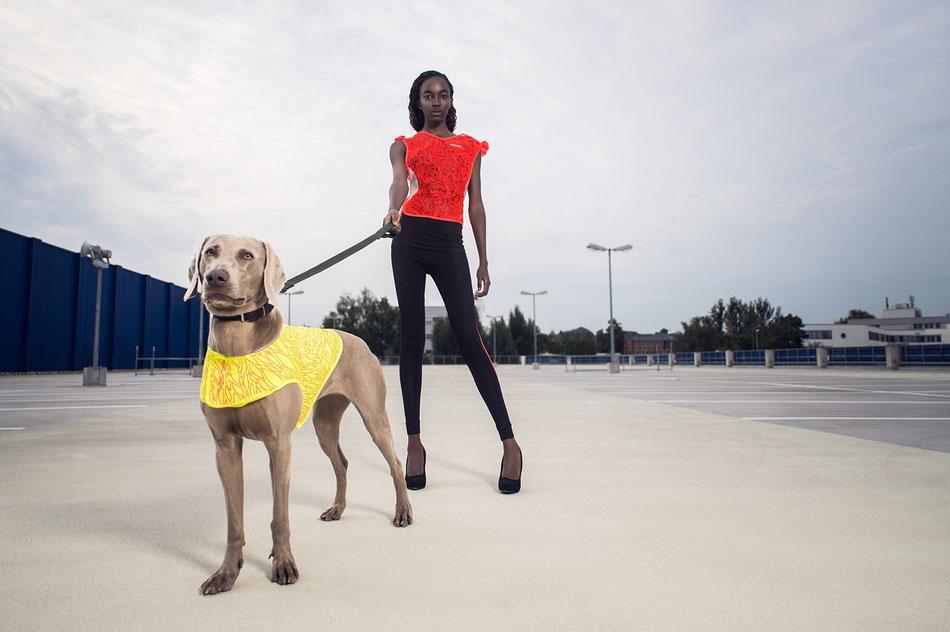 """GOVIS Signalweste und DOGVIS Hunde Signalweste mit dem NEONON Design """"Das Leben ist schön"""""""
