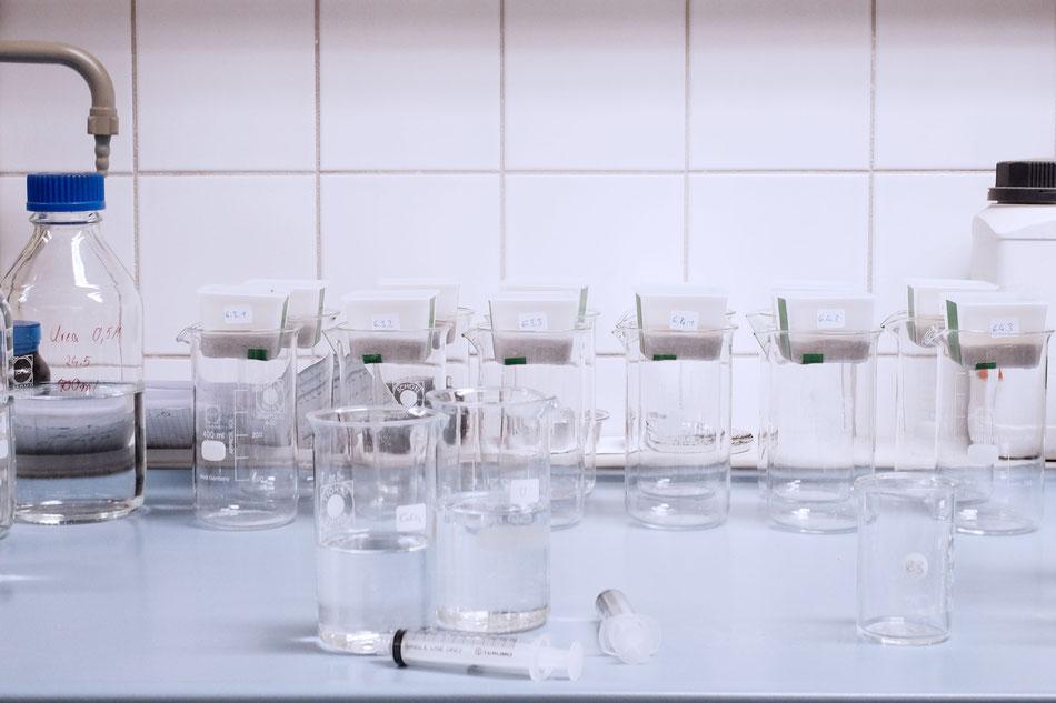 Versuchsaufbau für die Biomineralisation im Labor