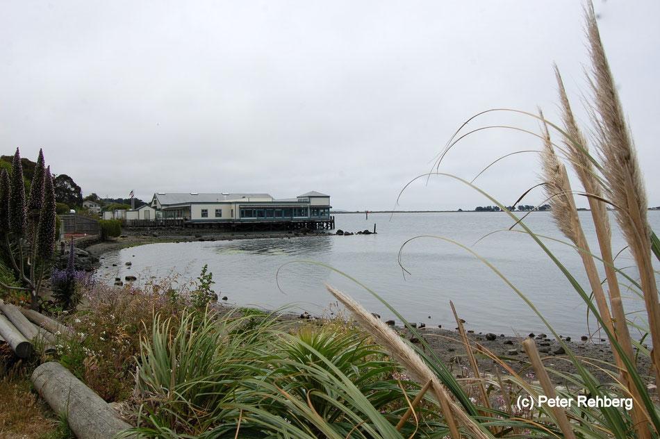 Bodega Bay, Peter Rehberg