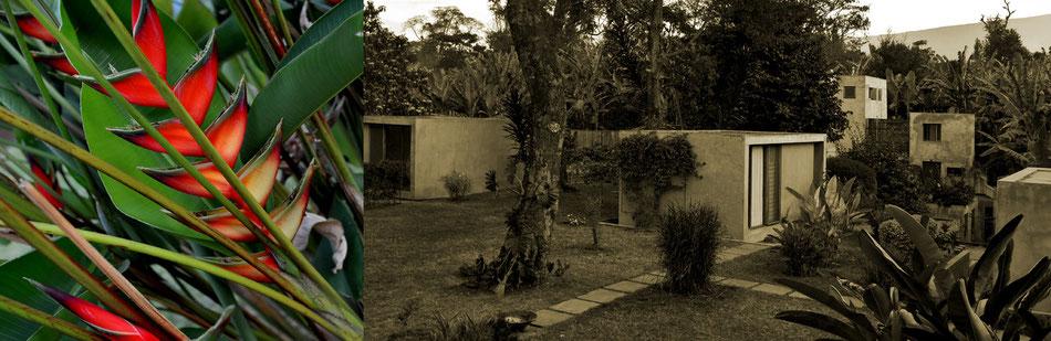 """""""Ein paradiesisches Stückchen Afrika"""" (Lufthansa Exclusive) - die Kaliwa Lodge am Kilimandscharo"""
