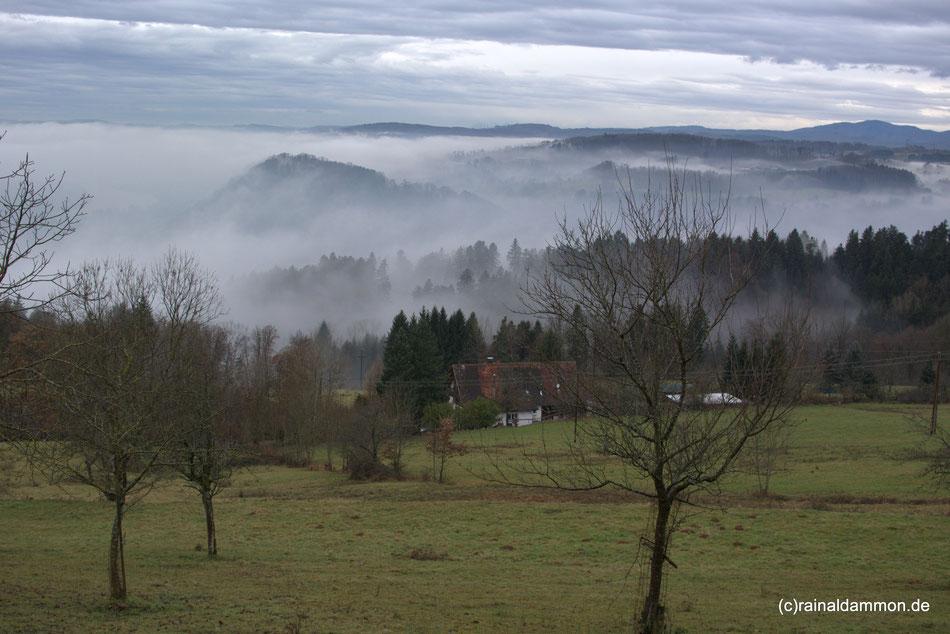 Blick vom Hotzenwald in das Hochrheintal Richtung Basel im Dezember 2013