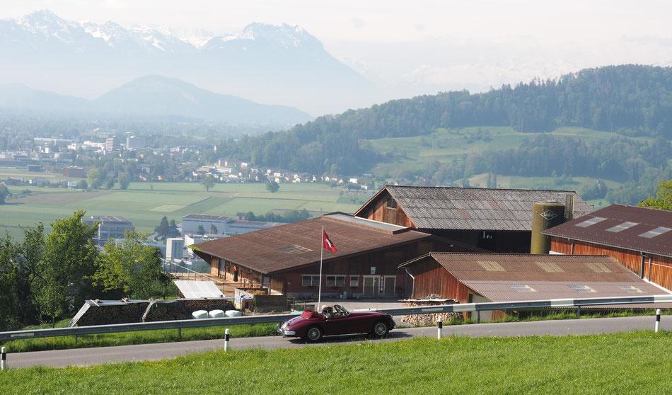 Kurvige Straßen im Thurgau mit dem Fürstentum Lichtenstein im Hintergrund