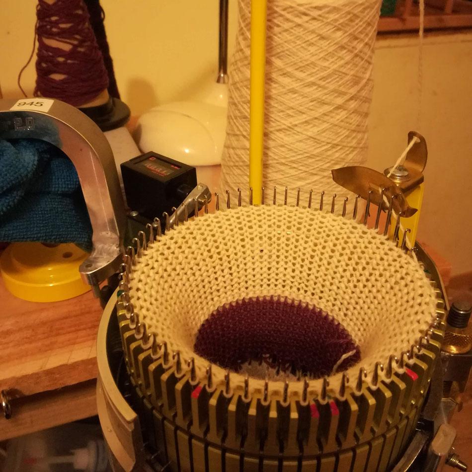 Tricoter des chaussettes pour l'anniversaire de mon amoureux en laine Caprinae