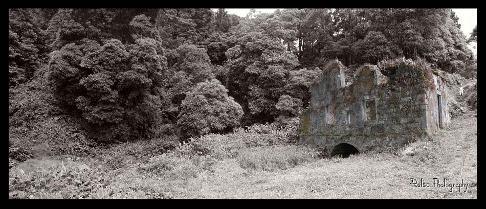Faial da Terra, Sao Miguel, Açores  .. (Vue à 160°, 30 × 80 cm)