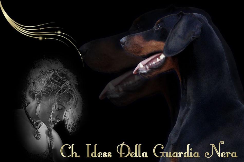 Ch. Idess Daahony Della Guardia Nera