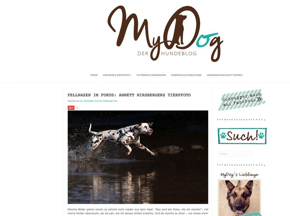 """Artikel über Tierpfoto im Hundeblog """"My Dog"""""""